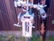 moottori-seagull