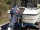moottorivene-shark