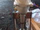 soutuvene-kello