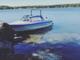 moottorivene-delphin