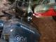 moottori-volvo-penta