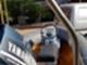 moottorivene-avon